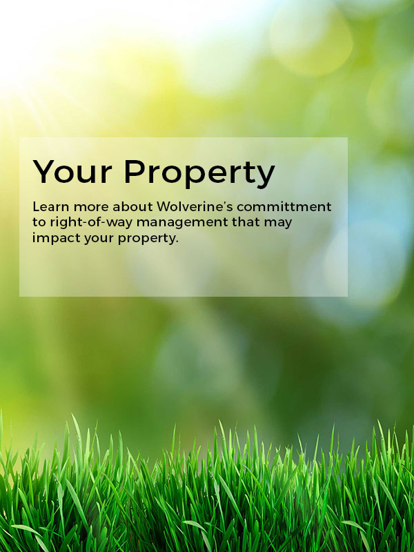 Your Property Learn more about right-of-way management
