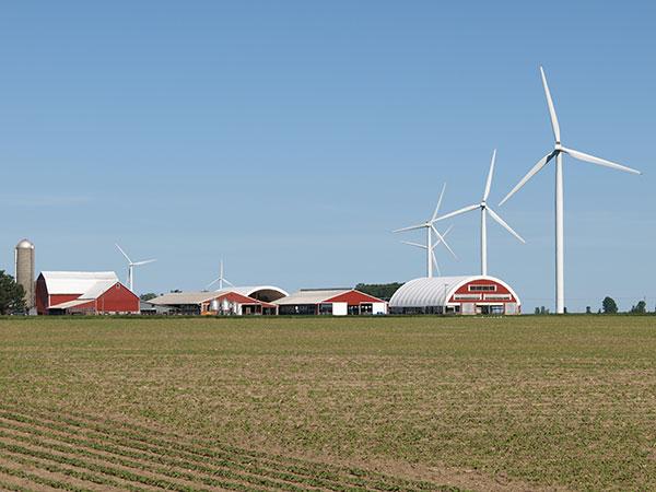 Harvest Wind Farm with turbines